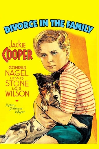 Poster of Divorce In The Family