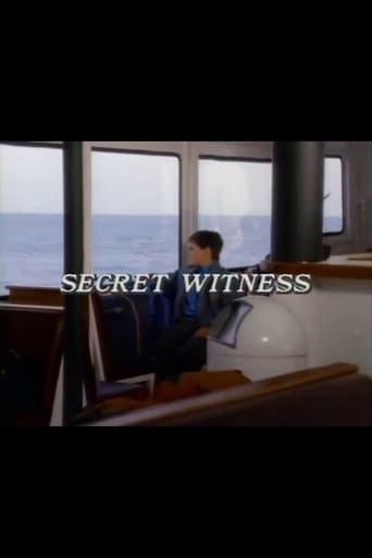 Poster of Secret Witness