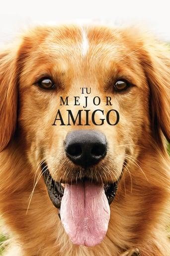 Poster of Tu mejor amigo
