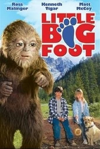 Poster of Little Bigfoot