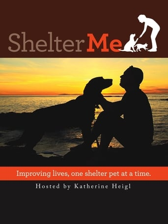 Poster of Shelter Me