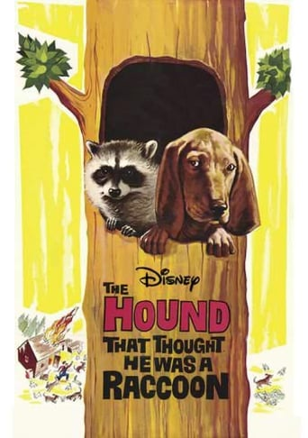 Poster of The Hound That Thought He Was a Raccoon