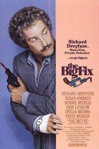 Poster of The Big Fix
