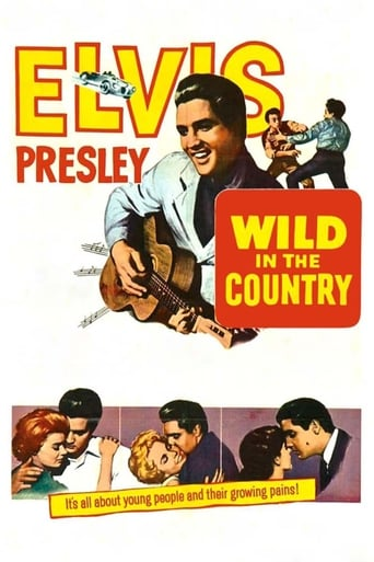 Poster of Wild in the Country