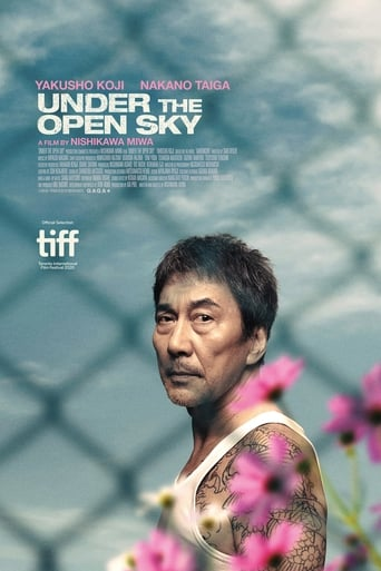 Poster of Under the Open Sky