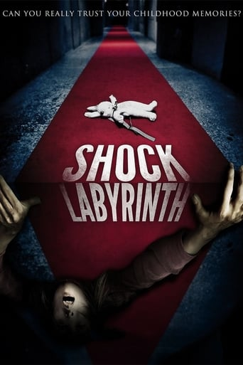 Poster of The Shock Labyrinth