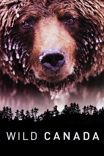 Poster of Wild Canada