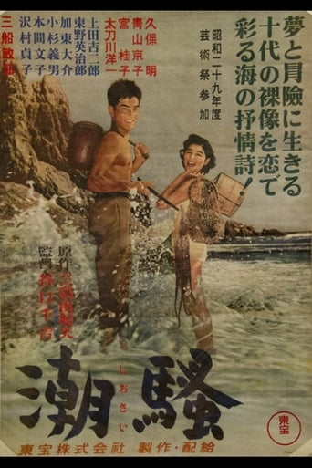 Poster of The Surf