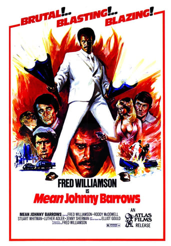 Poster of Mean Johnny Barrows