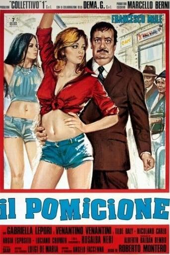 Poster of Il pomicione