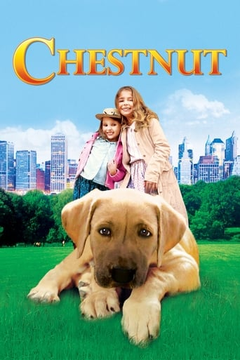 Poster of Chestnut: Hero of Central Park