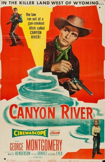 Poster of Canyon River