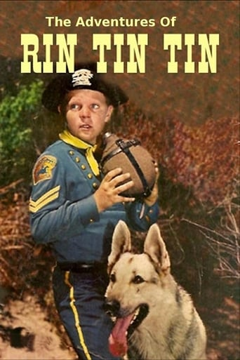 Poster of The Adventures of Rin Tin Tin
