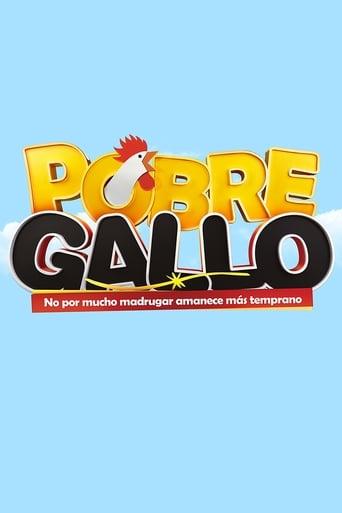 Poster of Pobre Gallo