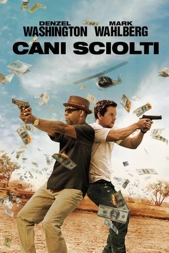 Poster of Cani sciolti