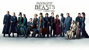 Fantastic Beasts Collection