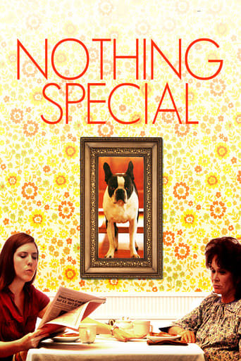 Poster of Nothing Special