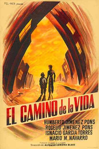 Poster of The Road of Life