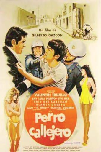 Poster of Perro callejero