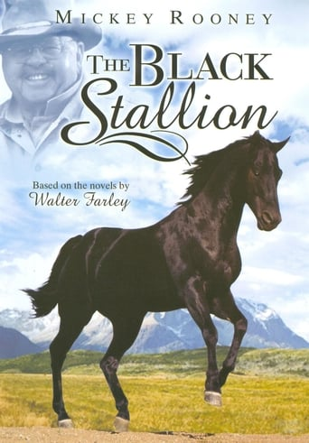 Poster of Adventures of the Black Stallion