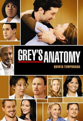 Staffel 5 (2008)
