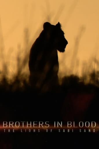 Brothers in Blood: The Lions of Sabi SandPoster