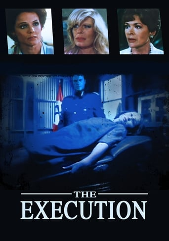 Poster of The Execution