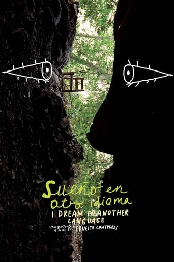 Poster of I Dream in Another Language