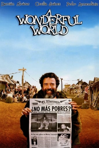 Poster of A Wonderful World