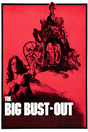 Poster of The Big Bust Out