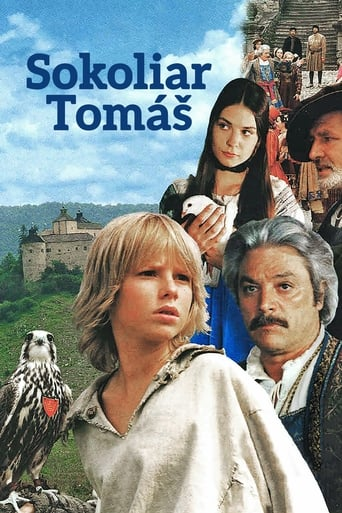 Poster of Tomáš and the Falcon King