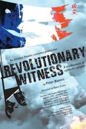 Revolutionary Witness poster