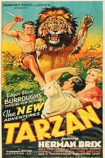 Poster of The New Adventures Of Tarzan