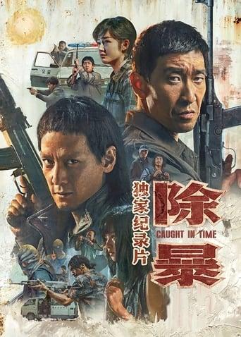 Poster of 除暴·独家纪录片