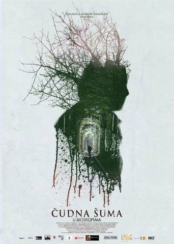 Poster of Čudna šuma