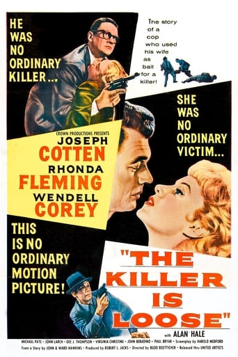 Poster of The Killer Is Loose