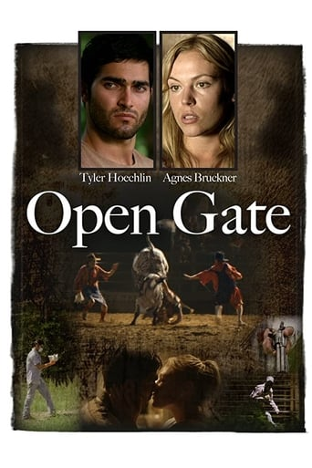 Poster of Open Gate