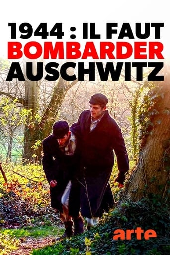 Poster of 1944: Should We Bomb Auschwitz?