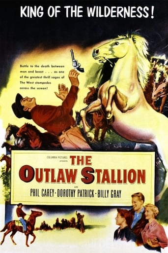 Poster of The Outlaw Stallion