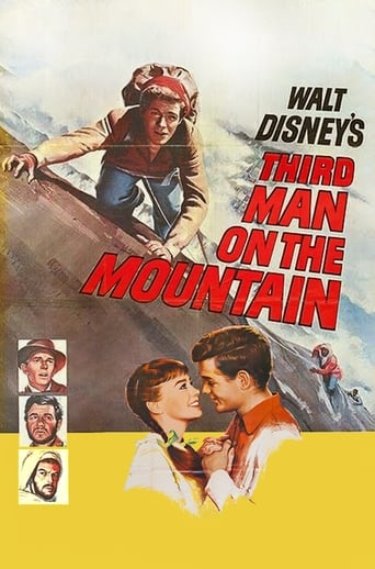 Poster of Third Man on the Mountain