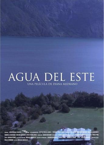 Poster of Agua del este