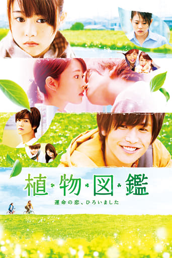 Poster of Evergreen Love