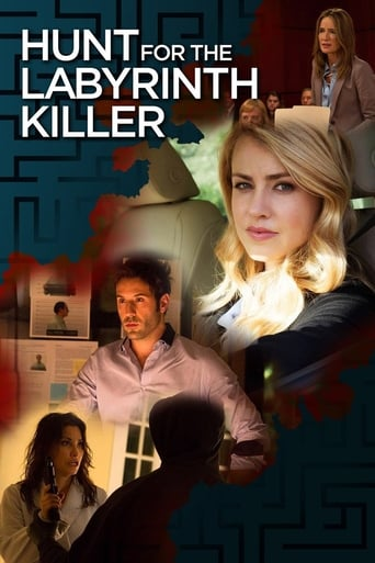 Poster of Hunt for the Labyrinth Killer