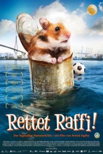 Poster of Mi amigo Raffi