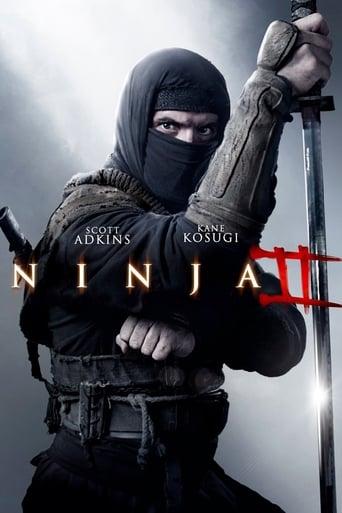 Poster of Ninja 2: Pomsta