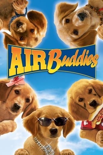 Poster of Air Buddies