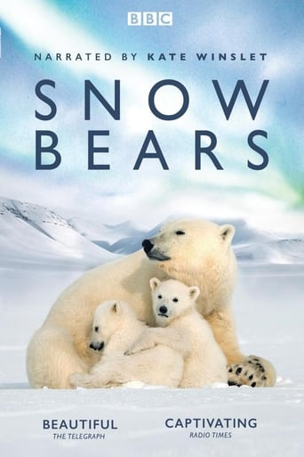 Poster of Snow Bears