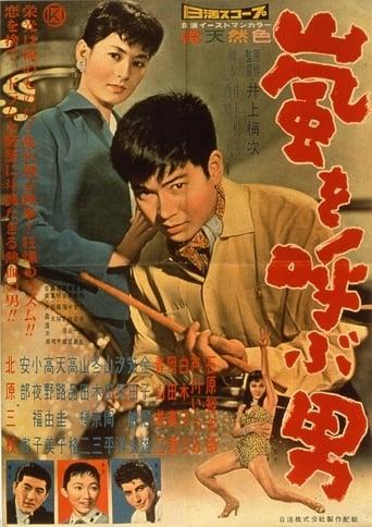 Poster of Bouřlivák
