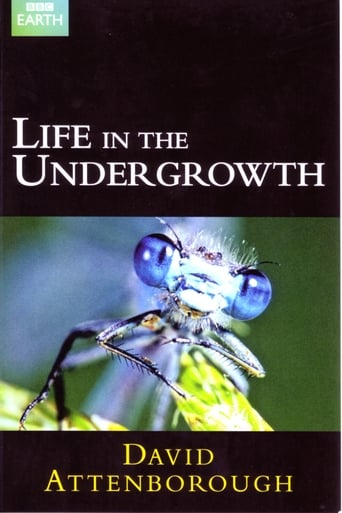 Poster of Life in the Undergrowth