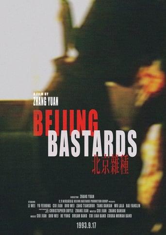 Poster of 北京杂种
